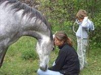 Amantes de los caballos
