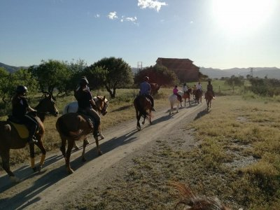Affordable Horse Riding Tour in Collserola, 1h