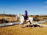 Aprendiendo equitación en pista de tierra