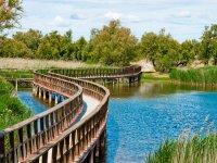 Aguas del Parque de Daimiel