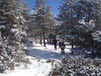 雪中的冒险