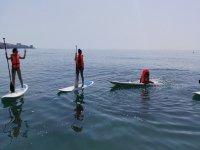 桨冲浪的不同模式