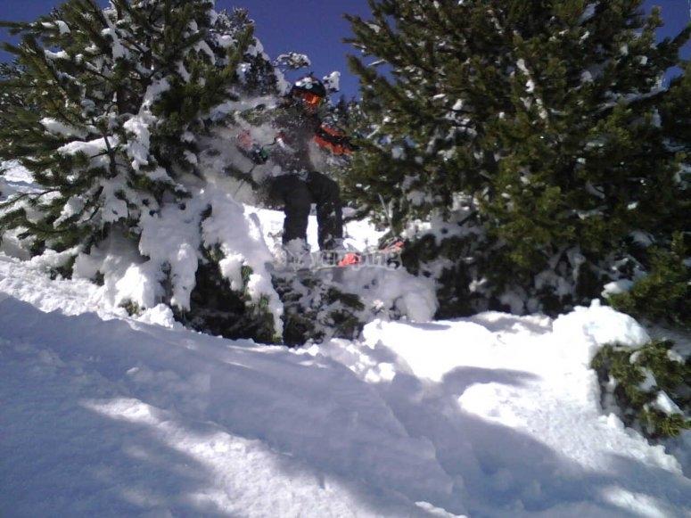 Trabajamos tanto esquí como snowboard