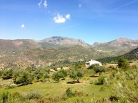 在Sierra de Tejeda自然公园徒步旅行