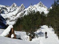 Esquí nórdico en Pineta