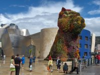 Guggenheim s Dog