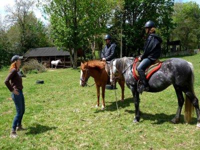 Introduzione alla gestione dei cavalli e percorso 1: 30h