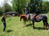 Introduction to horseback riding
