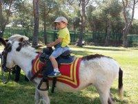 Montado en el caballo