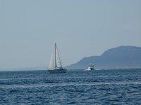 瓦伦西亚船在瓦伦西亚