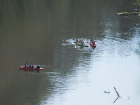 Remando en kayaks en grupo