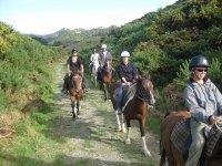 瓦伦西亚骑马骑马在瓦伦西亚