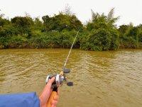 Pescando en agua dulce