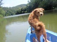 Con el perro en el kayak