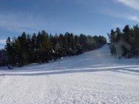 在雪地上滑雪雪