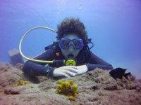 Inmersion de submarinismo en Lanzarote