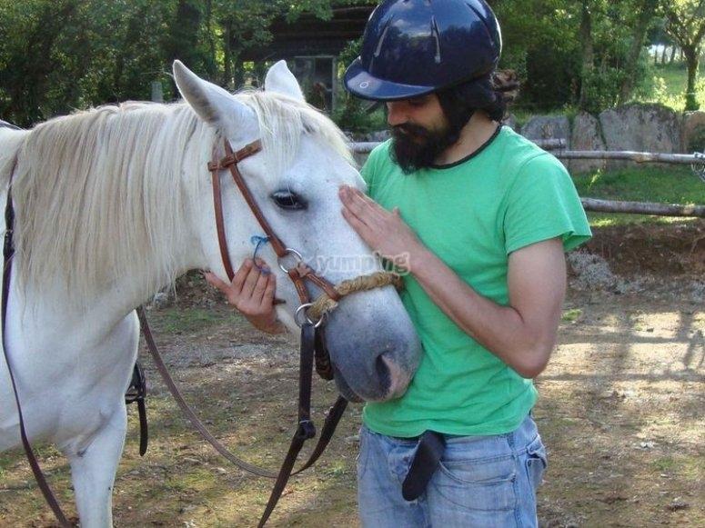 Conociendo al caballo