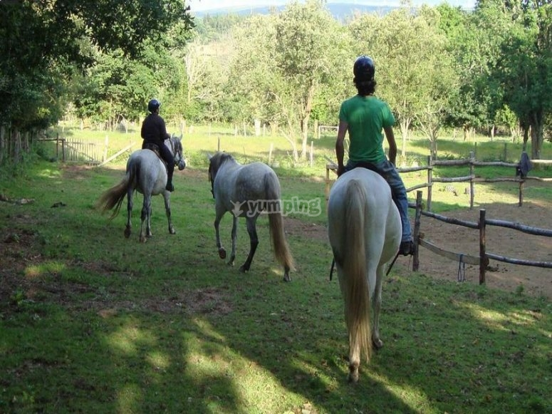 Horse riding lesson in Grañas