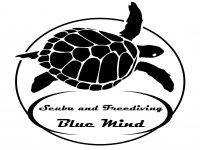 Diving Blue Tenerife