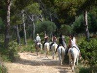 Rutas a caballo en grupo