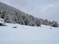 完美的下雪天