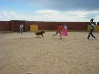 Cowboy running after the novillero