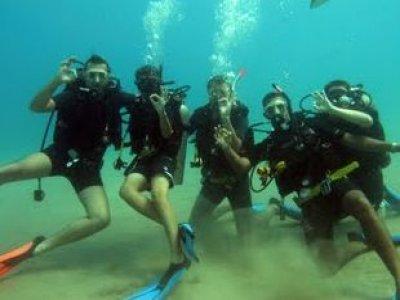 Dressel Divers