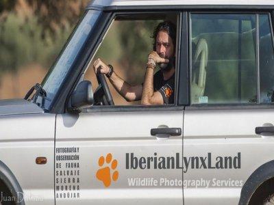 Iberian Lynx Land Safaris