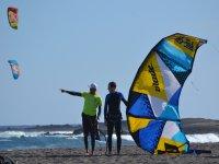 卡特尔给类在沙滩风筝放风筝