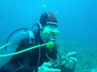 Diver with octopus
