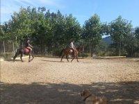 Paseando con los caballos dentro de la finca