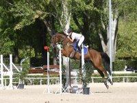 骑马跳跃训练的讲师