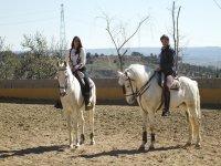 Sobre los caballos blancos