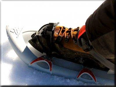 Natur Raquetas de Nieve