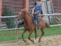 Ven a nuestras clases de equitación