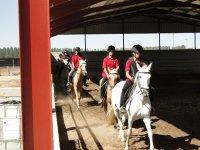 clases con los caballos