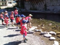与孩子们喂养鸭子