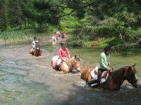 Paseos a caballo en la naturaleza