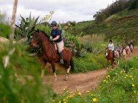 On horseback along the ascending path