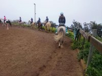 Ride along the horse track