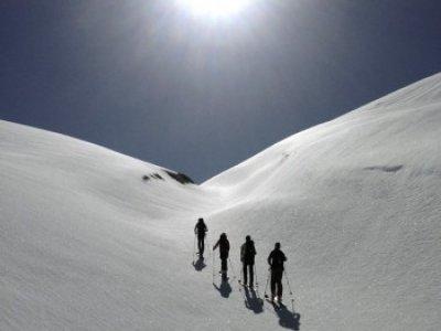 Kabi Mountain Guides Company Raquetas de Nieve