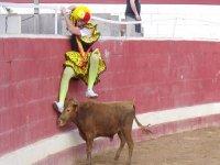 Cuidado con la vaquilla