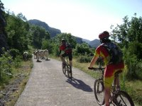 Departures in mountain bike