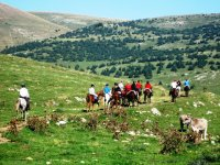 Enjoy a day on horseback in the Catalan highlands