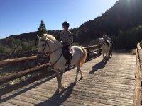 Cruzando el puente de madera con los caballos
