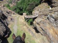 Caminos a caballo en la sierra granadina