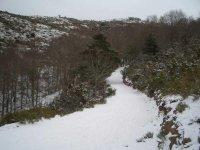 A través de senderos por el Parque Natural