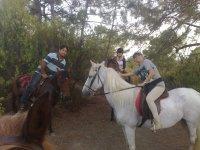 Paseo Del Team