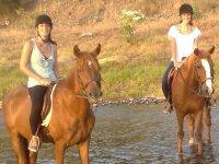 Metiendo los caballos en el rio