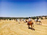 骑马去乡下